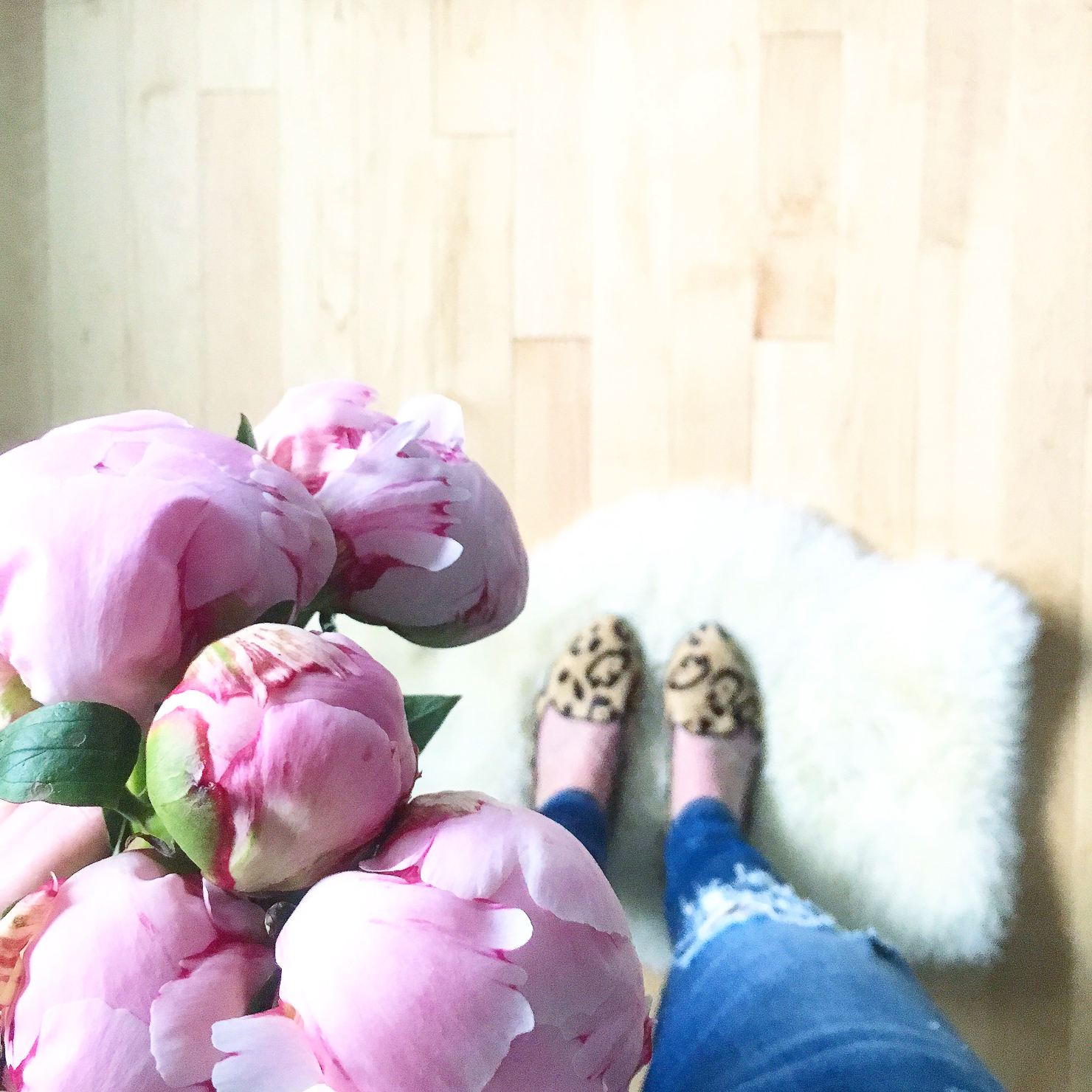 Pink Peonies Leopard Birs Slippers