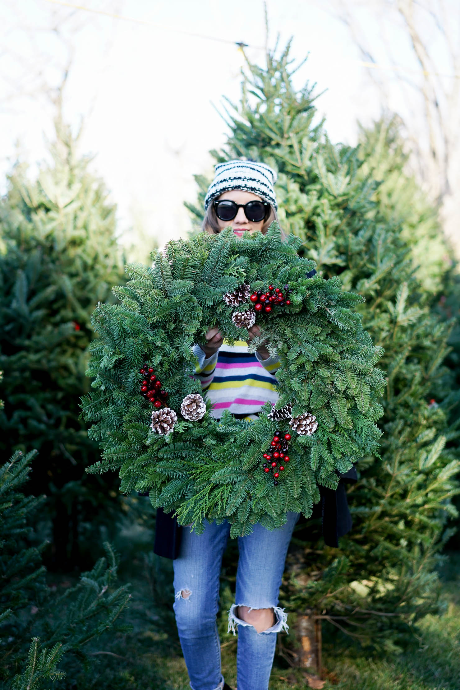 the best place to get a christmas tree in chicago what things to do in chicago