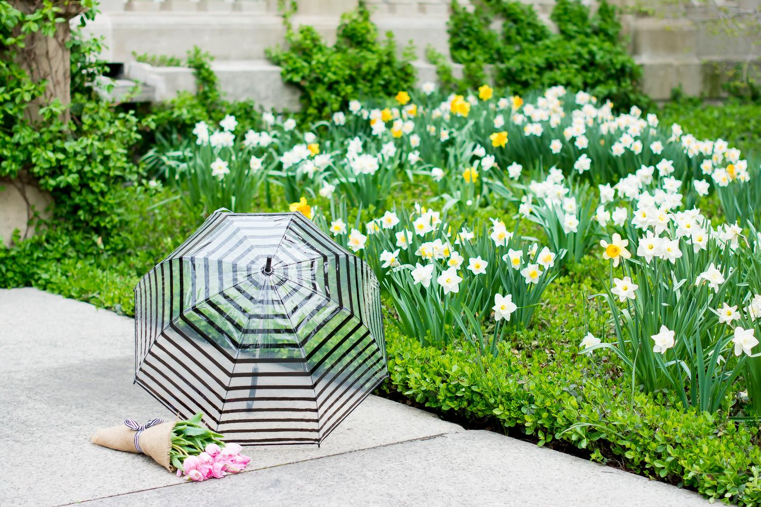 f8e5f7da85 H&M-black-lace-midi-dress-merona-denim-jacket-adidas-neo-clean -sneakers-pink-tulips-striped-bubble-umbrella-chicago-art-institute-29