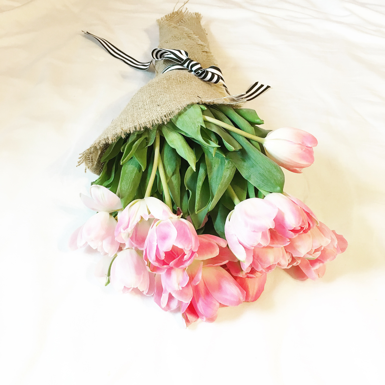 pink tulips wrapped in burlap, black and white striped gross grained ribbon