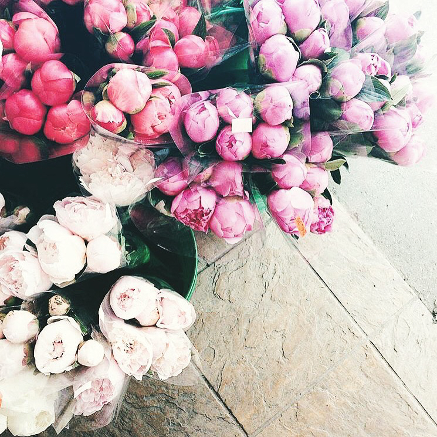 bouquets-of-colorful-peonies
