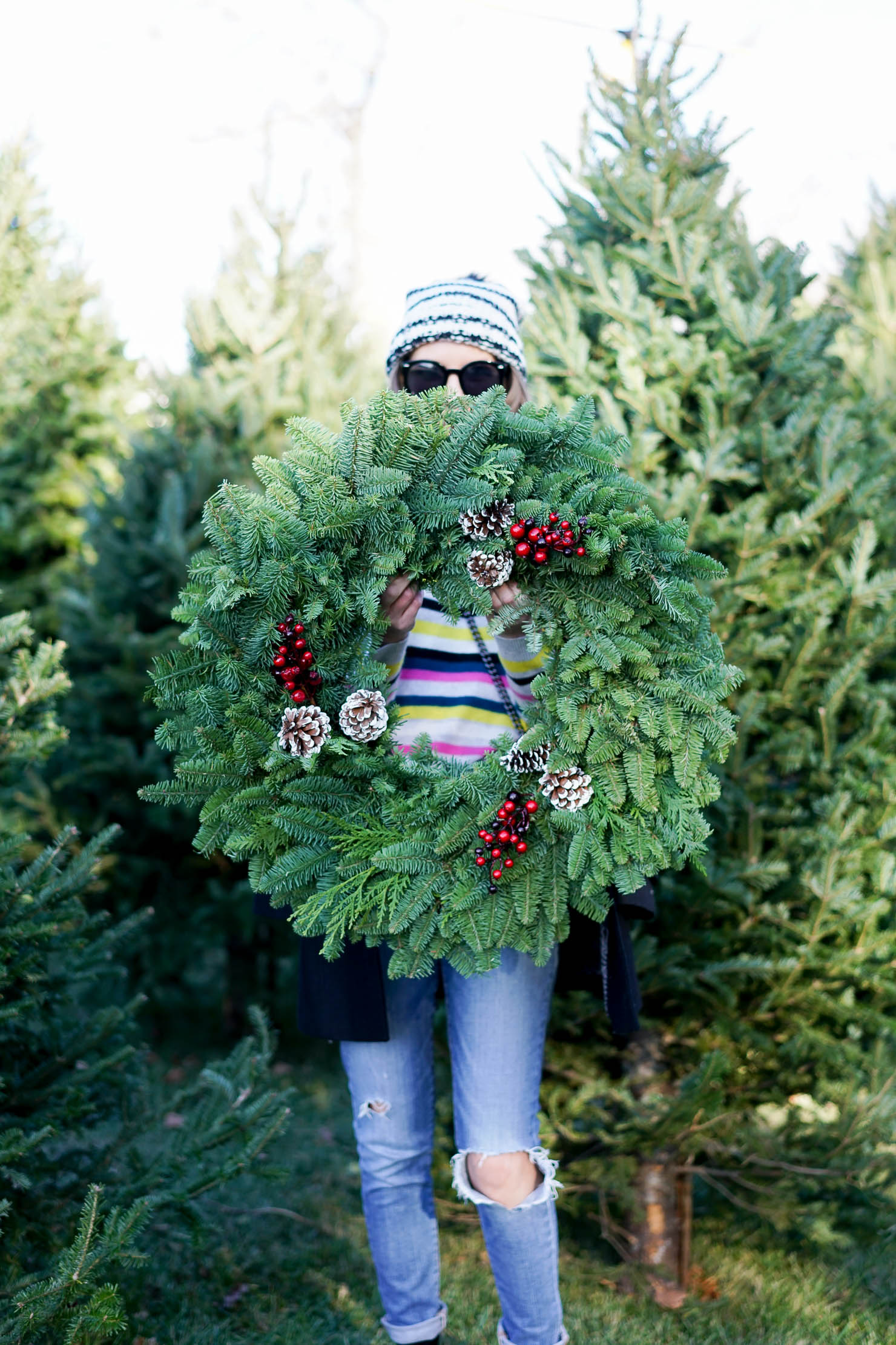 Christmas Things To Do In Chicago.The Best Pklace To Get A Christmas Tree In Chicago What